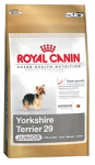 Yorkshire Terrier 29 Junior 8 kg